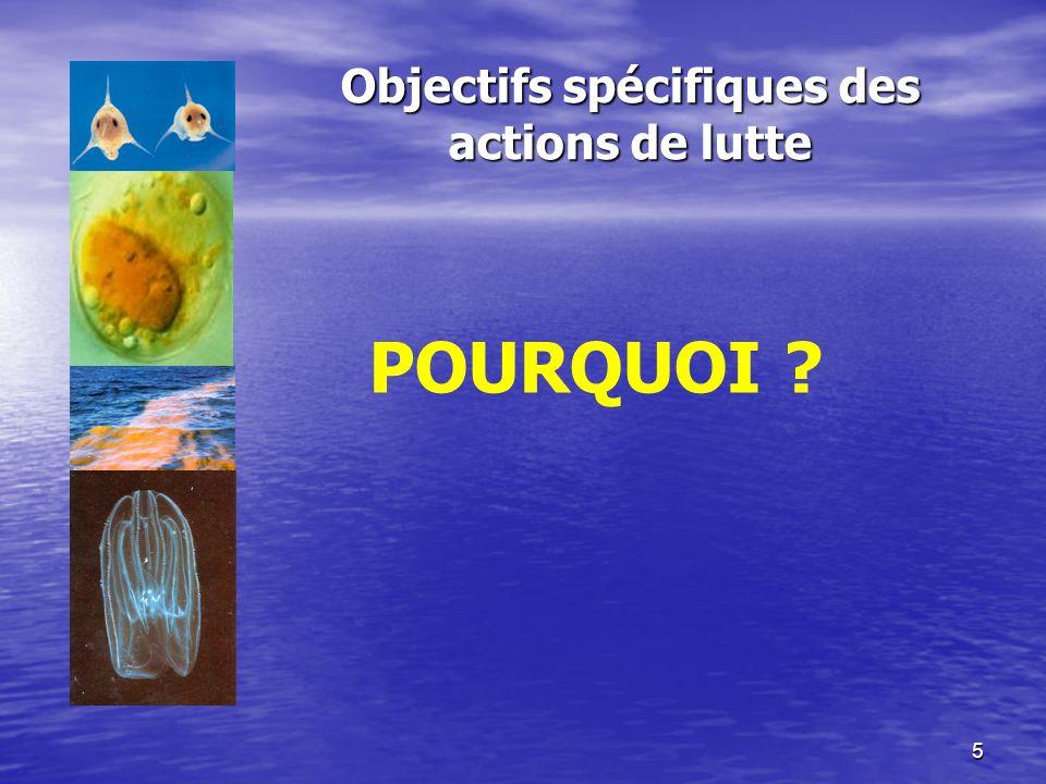 26 Exercice 1 Une compagnie de pêche côtière a demandé un permis pour importer les espèces X à des buts de mariculture.