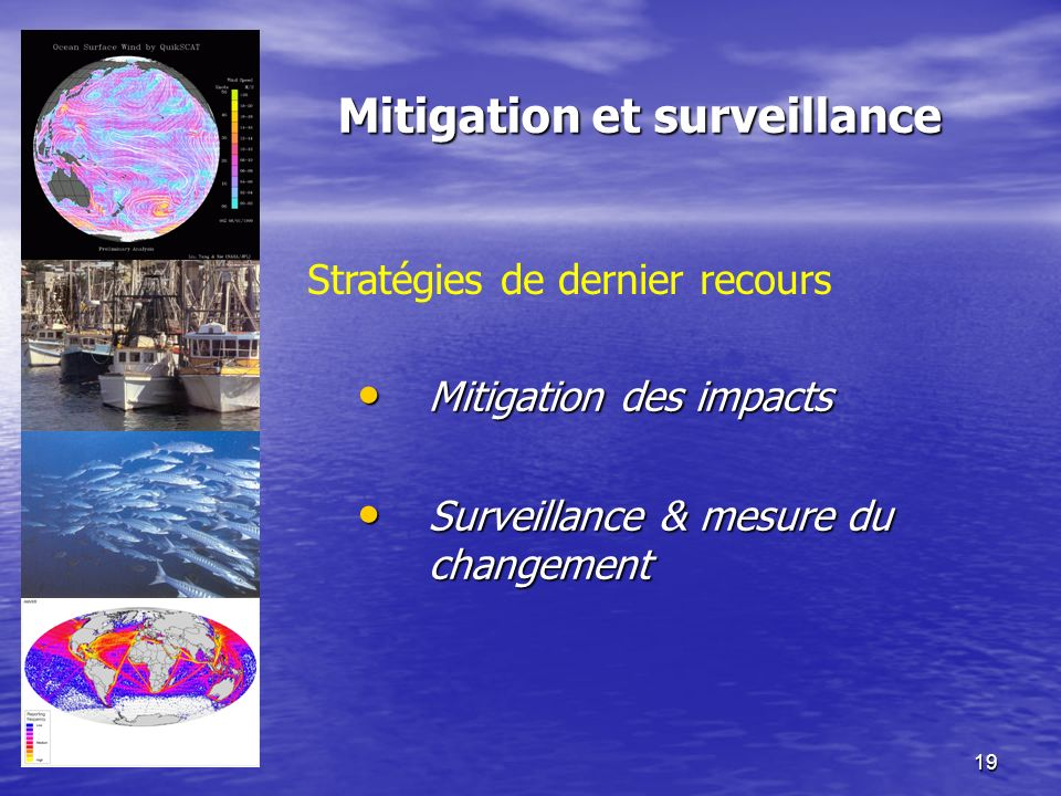 19 Mitigation et surveillance Stratégies de dernier recours Mitigation des impacts Mitigation des impacts Surveillance & mesure du changement Surveill
