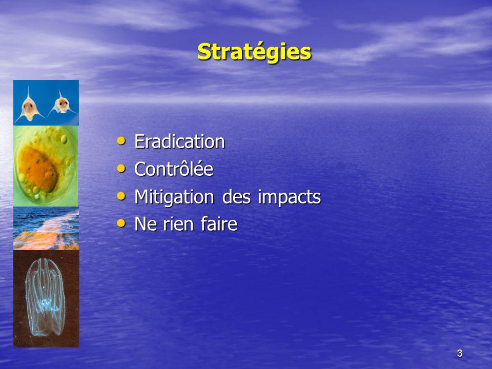 3 Stratégies Eradication Eradication Contrôlée Contrôlée Mitigation des impacts Mitigation des impacts Ne rien faire Ne rien faire