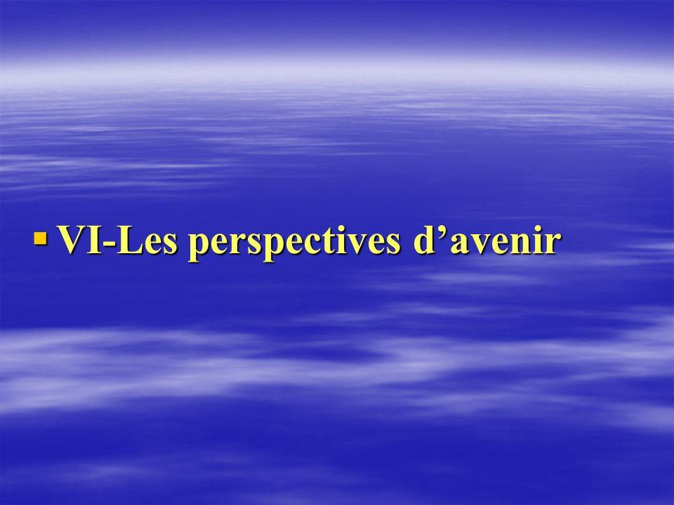 VI-Les perspectives davenir VI-Les perspectives davenir
