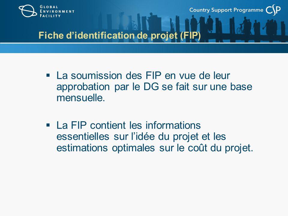 Fiche didentification de projet (FIP) La soumission des FIP en vue de leur approbation par le DG se fait sur une base mensuelle. La FIP contient les i
