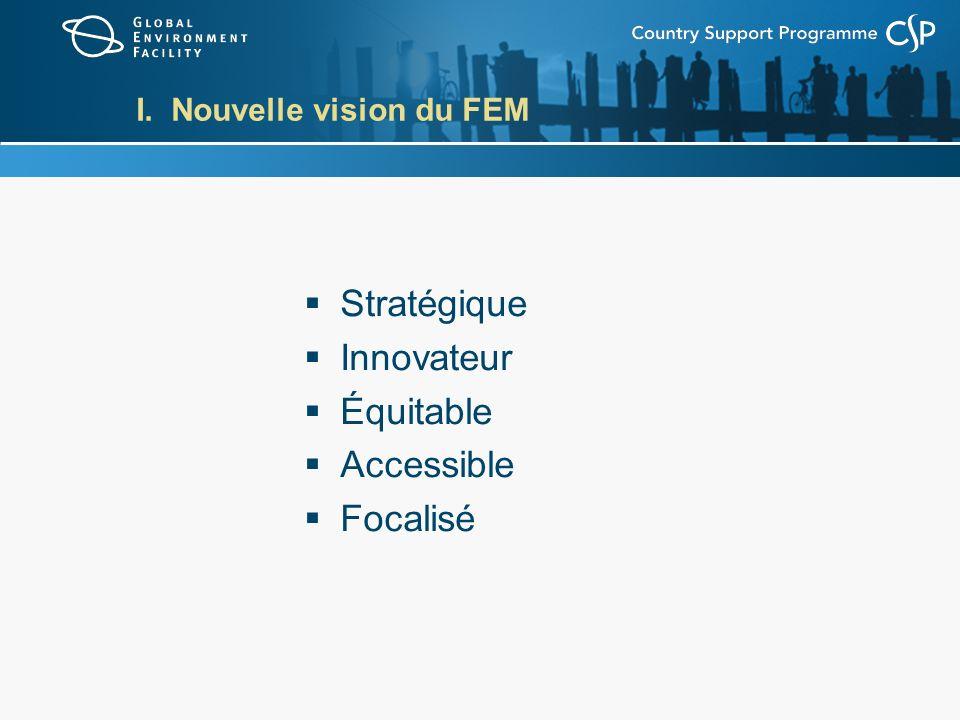 I. Nouvelle vision du FEM Stratégique Innovateur Équitable Accessible Focalisé