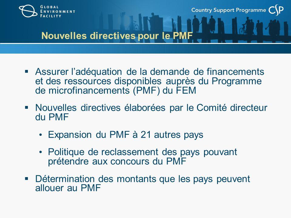 Nouvelles directives pour le PMF Assurer ladéquation de la demande de financements et des ressources disponibles auprès du Programme de microfinanceme