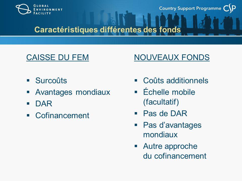 Caractéristiques différentes des fonds CAISSE DU FEM Surcoûts Avantages mondiaux DAR Cofinancement NOUVEAUX FONDS Coûts additionnels Échelle mobile (facultatif) Pas de DAR Pas davantages mondiaux Autre approche du cofinancement