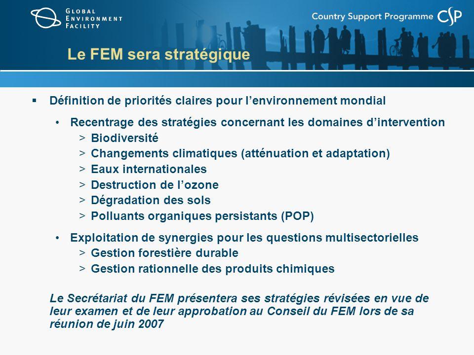 Le FEM sera stratégique (suite) Promotion dune approche programme De préférence à une approche axée sur le projet Élaboration et application dindicateurs deffets et dimpacts