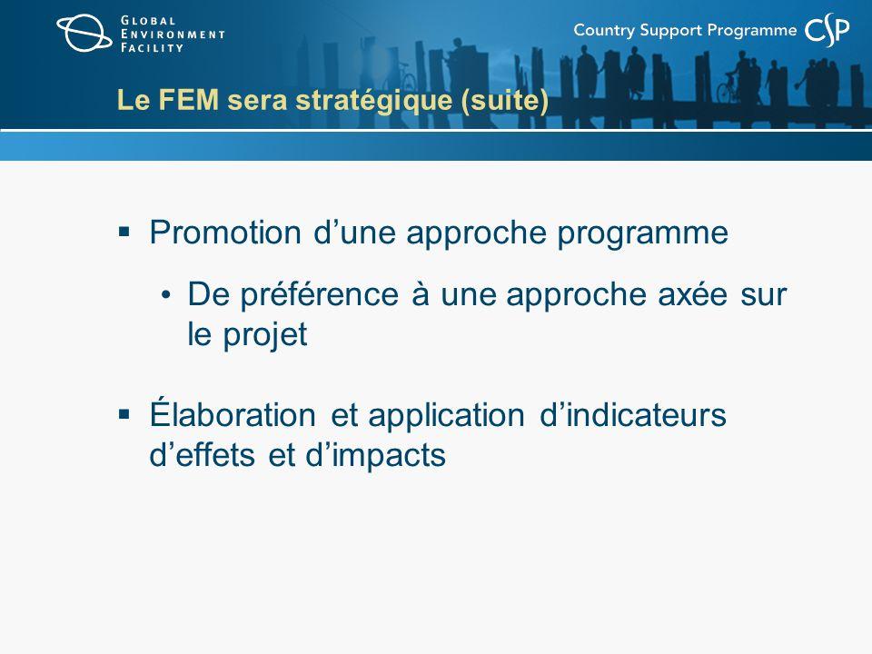 Le FEM sera stratégique (suite) Promotion dune approche programme De préférence à une approche axée sur le projet Élaboration et application dindicate