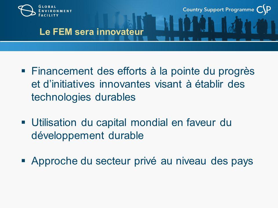 Le FEM sera innovateur Financement des efforts à la pointe du progrès et dinitiatives innovantes visant à établir des technologies durables Utilisation du capital mondial en faveur du développement durable Approche du secteur privé au niveau des pays