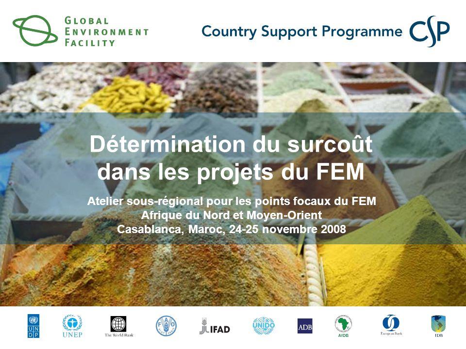 Détermination du surcoût dans les projets du FEM Atelier sous-régional pour les points focaux du FEM Afrique du Nord et Moyen-Orient Casablanca, Maroc