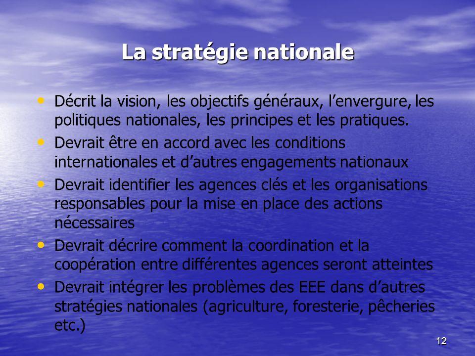 12 La stratégie nationale Décrit la vision, les objectifs généraux, lenvergure, les politiques nationales, les principes et les pratiques. Devrait êtr