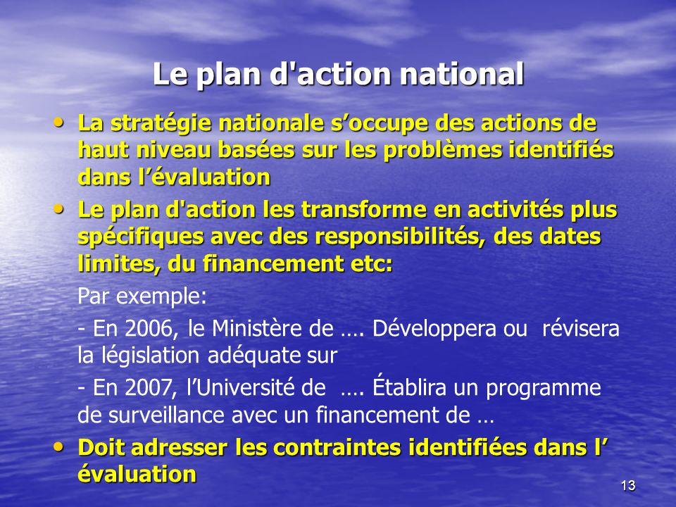 13 Le plan d'action national La stratégie nationale soccupe des actions de haut niveau basées sur les problèmes identifiés dans lévaluation La stratég