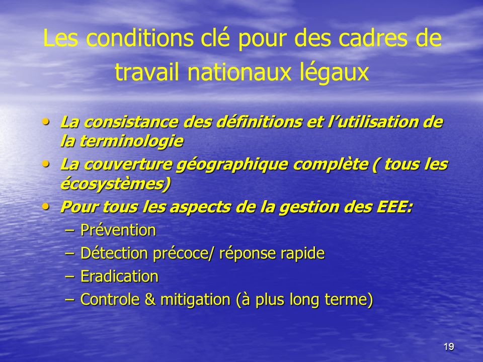 19 Les conditions clé pour des cadres de travail nationaux légaux La consistance des définitions et lutilisation de la terminologie La consistance des