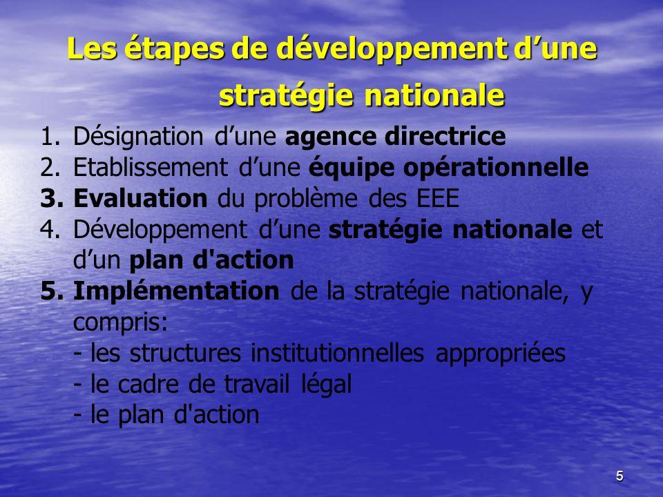5 Les étapes de développement dune stratégie nationale 1.Désignation dune agence directrice 2.Etablissement dune équipe opérationnelle 3.Evaluation du