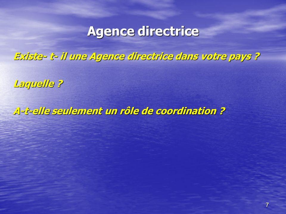 7 Agence directrice Existe- t- il une Agence directrice dans votre pays ? Laquelle ? A-t-elle seulement un rôle de coordination ?