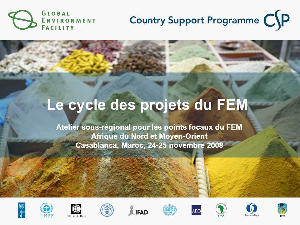 Le cycle des projets du FEM Atelier sous-régional pour les points focaux du FEM Afrique du Nord et Moyen-Orient Casablanca, Maroc, 24-25 novembre 2008