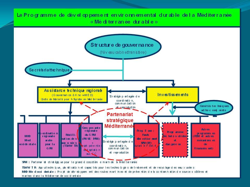 Partenariat stratégique Méditerranée