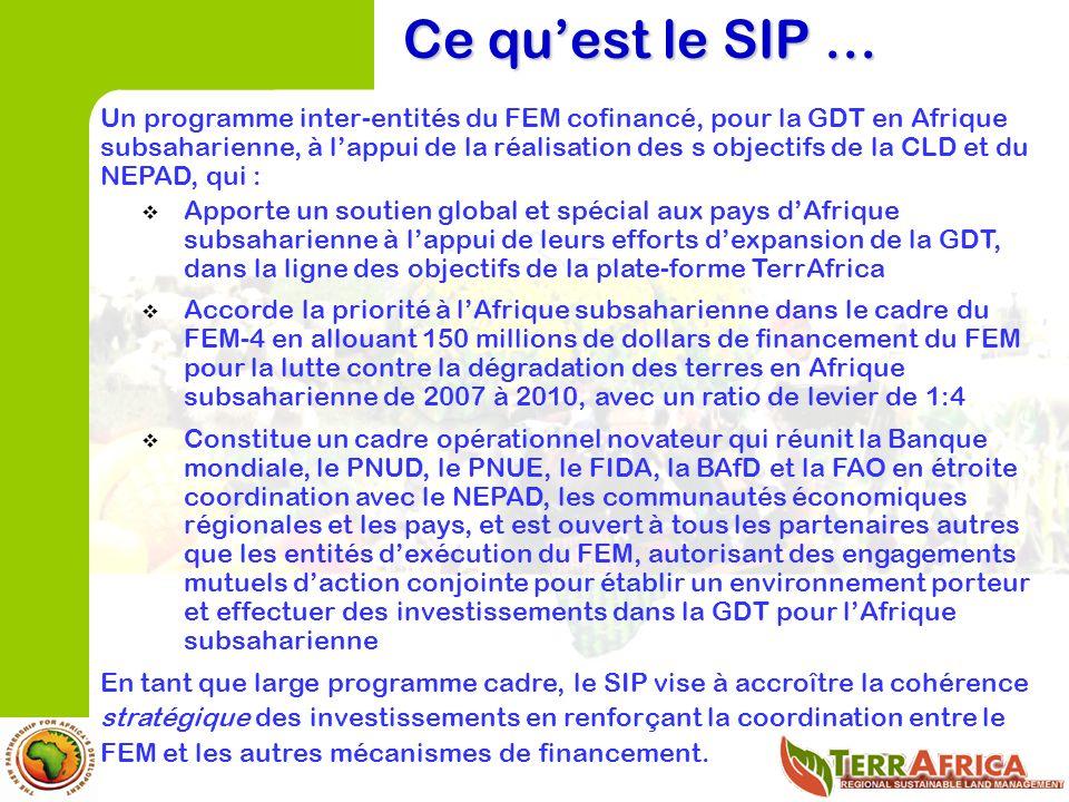 Ce quest le SIP … Un programme inter-entités du FEM cofinancé, pour la GDT en Afrique subsaharienne, à lappui de la réalisation des s objectifs de la CLD et du NEPAD, qui : Apporte un soutien global et spécial aux pays dAfrique subsaharienne à lappui de leurs efforts dexpansion de la GDT, dans la ligne des objectifs de la plate-forme TerrAfrica Accorde la priorité à lAfrique subsaharienne dans le cadre du FEM-4 en allouant 150 millions de dollars de financement du FEM pour la lutte contre la dégradation des terres en Afrique subsaharienne de 2007 à 2010, avec un ratio de levier de 1:4 Constitue un cadre opérationnel novateur qui réunit la Banque mondiale, le PNUD, le PNUE, le FIDA, la BAfD et la FAO en étroite coordination avec le NEPAD, les communautés économiques régionales et les pays, et est ouvert à tous les partenaires autres que les entités dexécution du FEM, autorisant des engagements mutuels daction conjointe pour établir un environnement porteur et effectuer des investissements dans la GDT pour lAfrique subsaharienne En tant que large programme cadre, le SIP vise à accroître la cohérence stratégique des investissements en renforçant la coordination entre le FEM et les autres mécanismes de financement.