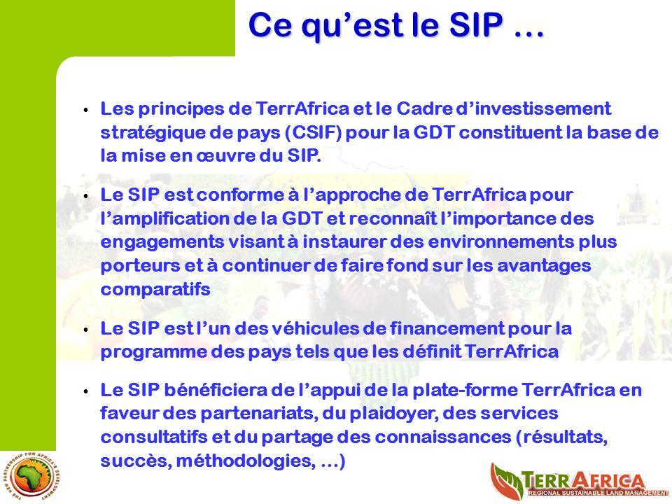 Les principes de TerrAfrica et le Cadre dinvestissement stratégique de pays (CSIF) pour la GDT constituent la base de la mise en œuvre du SIP.