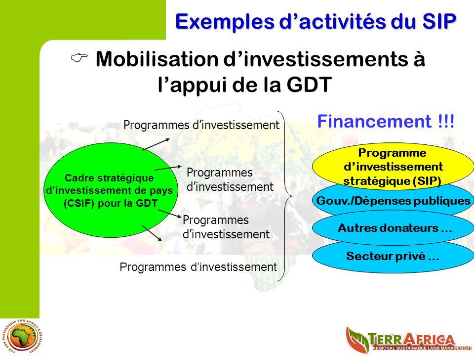 Exemples dactivités du SIP Mobilisation dinvestissements à lappui de la GDT Gouv./Dépenses publiques Financement !!.