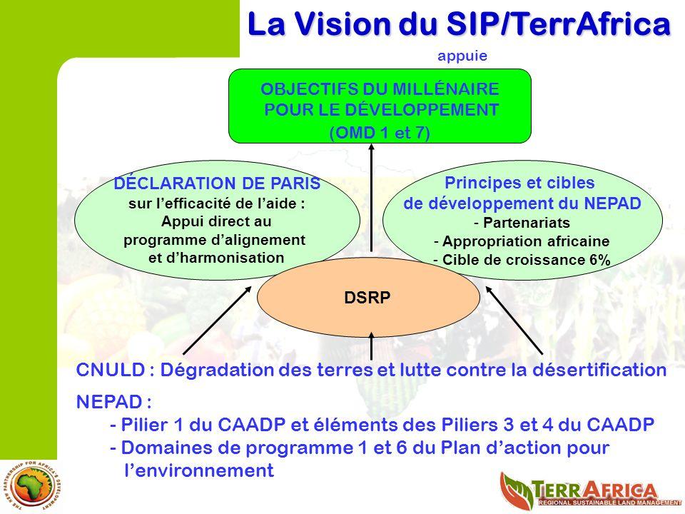 CNULD : Dégradation des terres et lutte contre la désertification NEPAD : - Pilier 1 du CAADP et éléments des Piliers 3 et 4 du CAADP - Domaines de programme 1 et 6 du Plan daction pour lenvironnement La Vision du SIP/TerrAfrica appuie OBJECTIFS DU MILLÉNAIRE POUR LE DÉVELOPPEMENT (OMD 1 et 7) DÉCLARATION DE PARIS sur lefficacité de laide : Appui direct au programme dalignement et dharmonisation Principes et cibles de développement du NEPAD - Partenariats - Appropriation africaine - Cible de croissance 6% DSRP