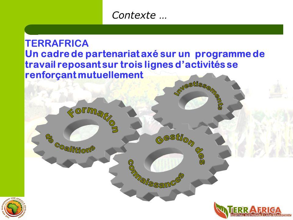 Contexte … TERRAFRICA Un cadre de partenariat axé sur un programme de travail reposant sur trois lignes dactivités se renforçant mutuellement