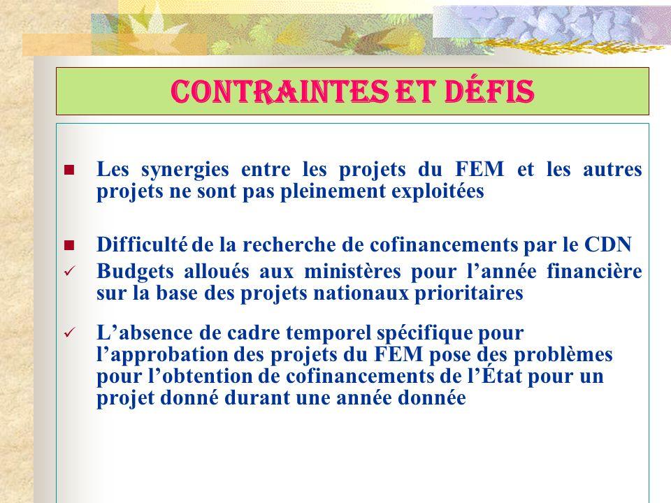 CONTRAINTES ET DÉFIS Les synergies entre les projets du FEM et les autres projets ne sont pas pleinement exploitées Difficulté de la recherche de cofi