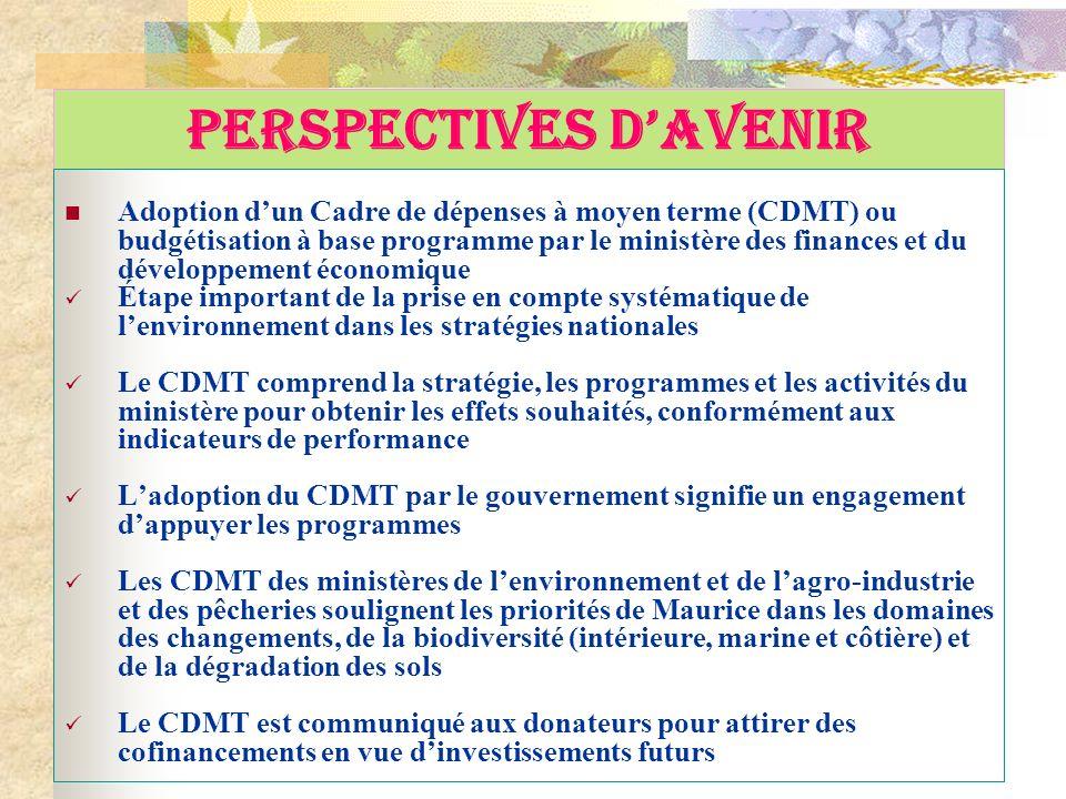 PERSPECTIVES DAVENIR Adoption dun Cadre de dépenses à moyen terme (CDMT) ou budgétisation à base programme par le ministère des finances et du dévelop