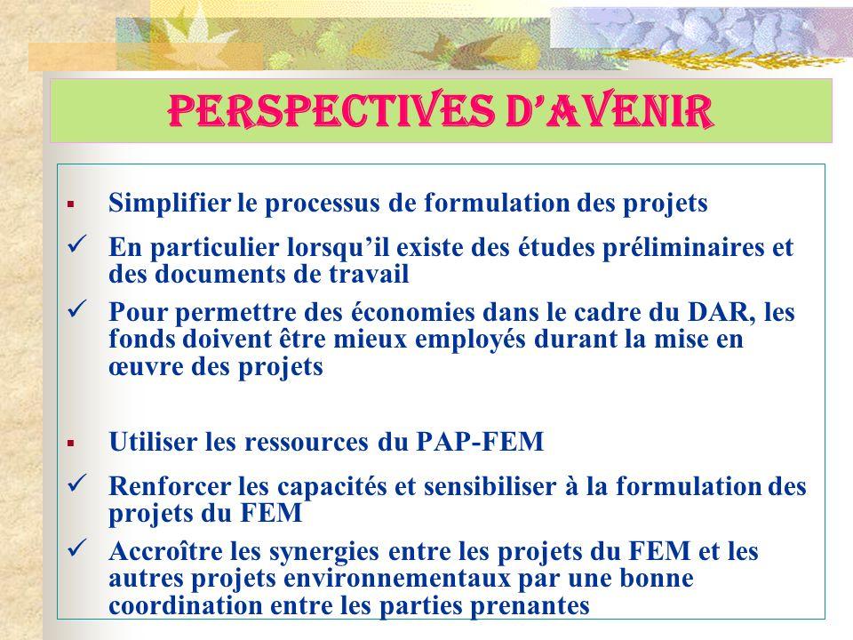 PERSPECTIVES DAVENIR Simplifier le processus de formulation des projets En particulier lorsquil existe des études préliminaires et des documents de tr