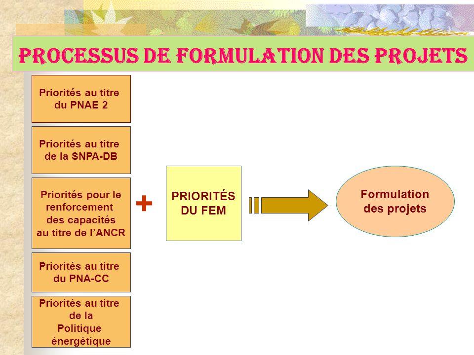 Priorités au titre du PNAE 2 Priorités au titre de la SNPA-DB Formulation des projets Processus de Formulation des Projets Priorités pour le renforcem