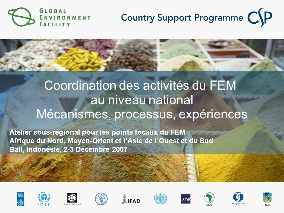 Coordination des activités du FEM au niveau national Mécanismes, processus, expériences Atelier sous-régional pour les points focaux du FEM Afrique du Nord, Moyen-Orient et lAsie de lOuest et du Sud Bali, Indonésie, 2-3 Décembre 2007