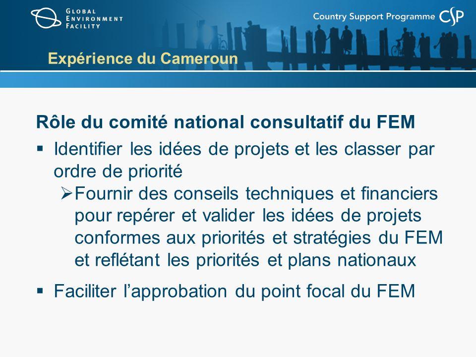 Expérience du Cameroun Rôle du comité national consultatif du FEM Identifier les idées de projets et les classer par ordre de priorité Fournir des conseils techniques et financiers pour repérer et valider les idées de projets conformes aux priorités et stratégies du FEM et reflétant les priorités et plans nationaux Faciliter lapprobation du point focal du FEM