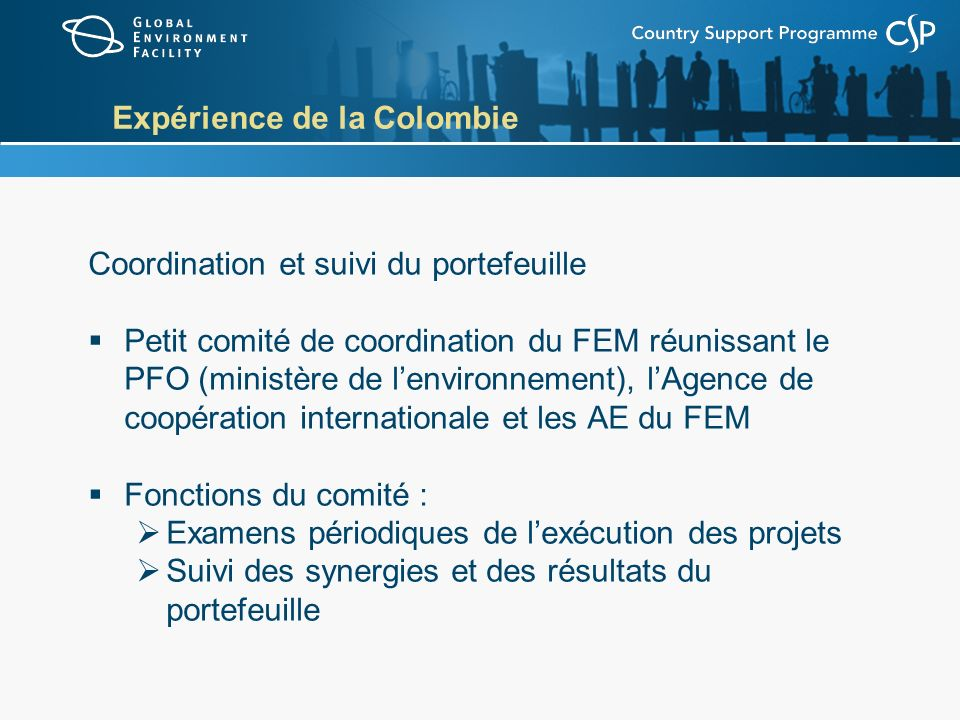 Expérience de la Colombie Coordination et suivi du portefeuille Petit comité de coordination du FEM réunissant le PFO (ministère de lenvironnement), lAgence de coopération internationale et les AE du FEM Fonctions du comité : Examens périodiques de lexécution des projets Suivi des synergies et des résultats du portefeuille