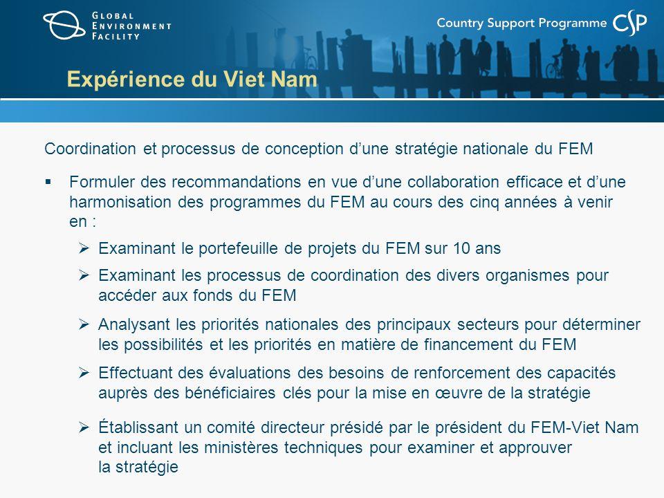 Expérience du Viet Nam Coordination et processus de conception dune stratégie nationale du FEM Formuler des recommandations en vue dune collaboration efficace et dune harmonisation des programmes du FEM au cours des cinq années à venir en : Examinant le portefeuille de projets du FEM sur 10 ans Examinant les processus de coordination des divers organismes pour accéder aux fonds du FEM Analysant les priorités nationales des principaux secteurs pour déterminer les possibilités et les priorités en matière de financement du FEM Effectuant des évaluations des besoins de renforcement des capacités auprès des bénéficiaires clés pour la mise en œuvre de la stratégie Établissant un comité directeur présidé par le président du FEM-Viet Nam et incluant les ministères techniques pour examiner et approuver la stratégie