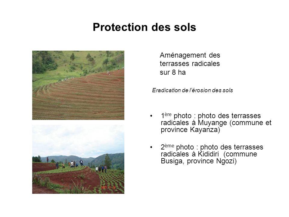 Protection des sols Aménagement des terrasses radicales sur 8 ha Eradication de lérosion des sols 1 ère photo : photo des terrasses radicales à Muyang