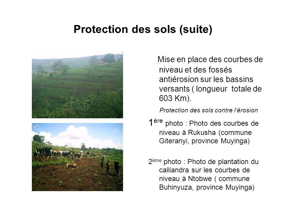Protection des sols (suite) Mise en place des courbes de niveau et des fossés antiérosion sur les bassins versants ( longueur totale de 603 Km). Prote
