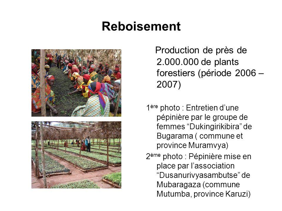Reboisement Production de près de 2.000.000 de plants forestiers (période 2006 – 2007) 1 ère photo : Entretien dune pépinière par le groupe de femmes