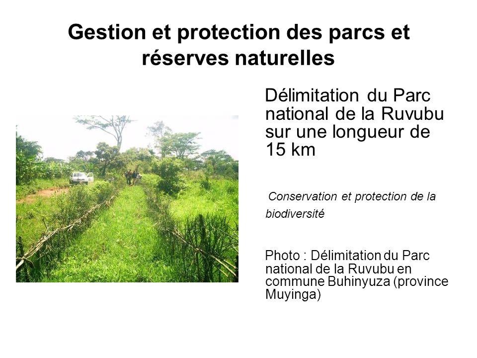 Gestion et protection des parcs et réserves naturelles Délimitation du Parc national de la Ruvubu sur une longueur de 15 km Conservation et protection