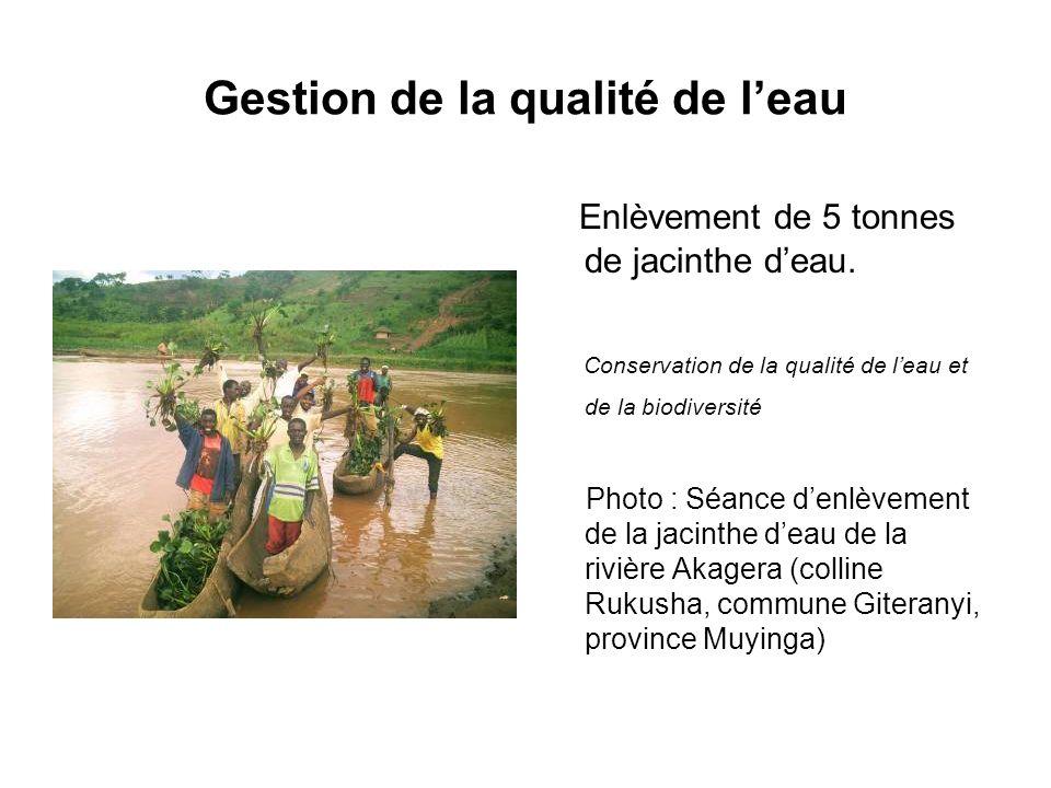 Gestion de la qualité de leau Enlèvement de 5 tonnes de jacinthe deau. Conservation de la qualité de leau et de la biodiversité Photo : Séance denlève