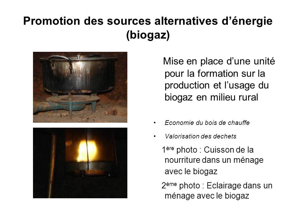 Promotion des sources alternatives dénergie (biogaz) Mise en place dune unité pour la formation sur la production et lusage du biogaz en milieu rural