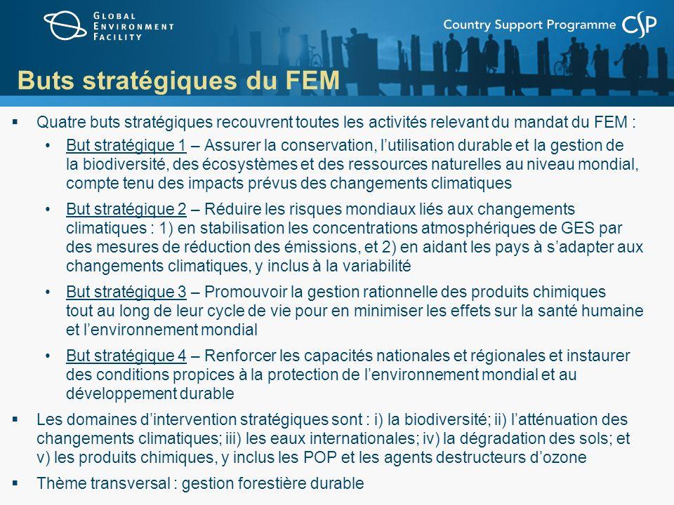 Buts stratégiques du FEM Quatre buts stratégiques recouvrent toutes les activités relevant du mandat du FEM : But stratégique 1 – Assurer la conservat
