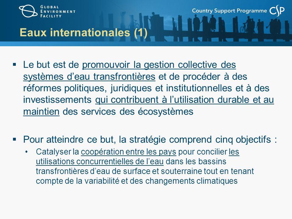 Eaux internationales (2) Catalyser la coopération entre les pays pour rétablir les pêcheries marines et réduire la pollution des côtes et des grands écosystèmes marins tout en tenant compte de la variabilité et des changements climatiques Appuyer le renforcement des capacités, lapprentissage du portefeuille et la satisfaction des besoins de recherche ciblée pour une gestion conjointe et axée sur les écosystèmes des systèmes deau transfrontières Promouvoir une gestion efficace des zones marines situées au-delà des limites de la juridiction nationale en vue de prévenir lépuisement des pêcheries – conjoint avec la biodiversité Entreprendre au niveau pilote des démonstrations de la réduction de la pollution par les substances toxiques persistantes, en particulier les perturbateurs endocriniens - conjoint avec les produits chimiques