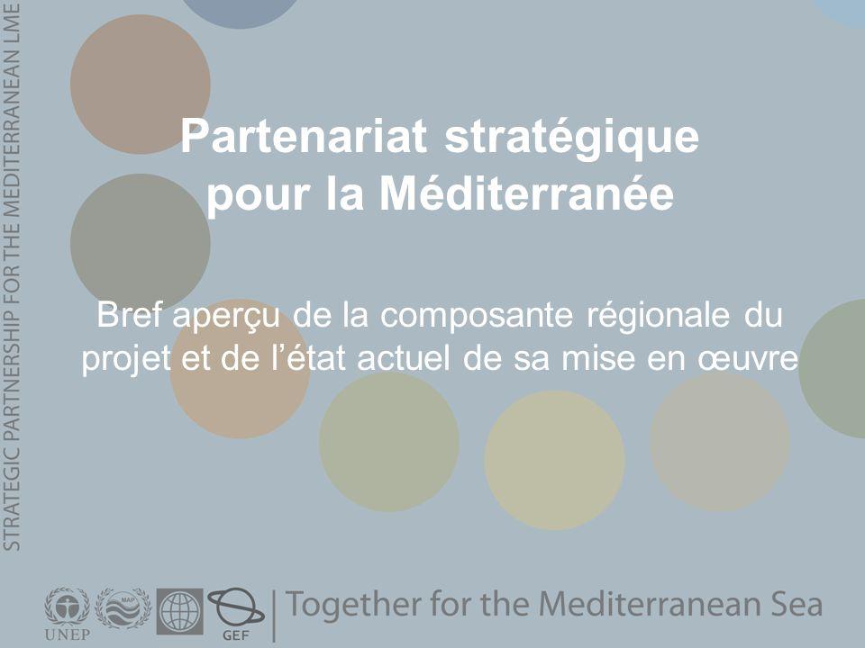 Partenariat stratégique pour la Méditerranée Bref aperçu de la composante régionale du projet et de létat actuel de sa mise en œuvre
