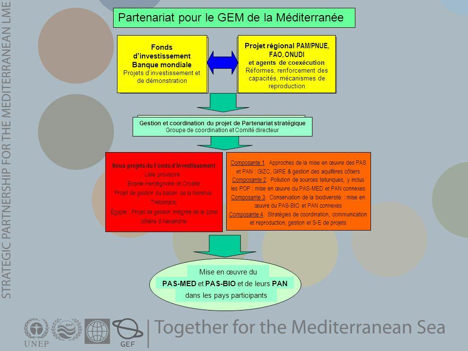 Partenariat pour le GEM de la Méditerranée Fonds dinvestissement Banque mondiale Projets dinvestissement et de démonstration Projet régional PAM/PNUE,