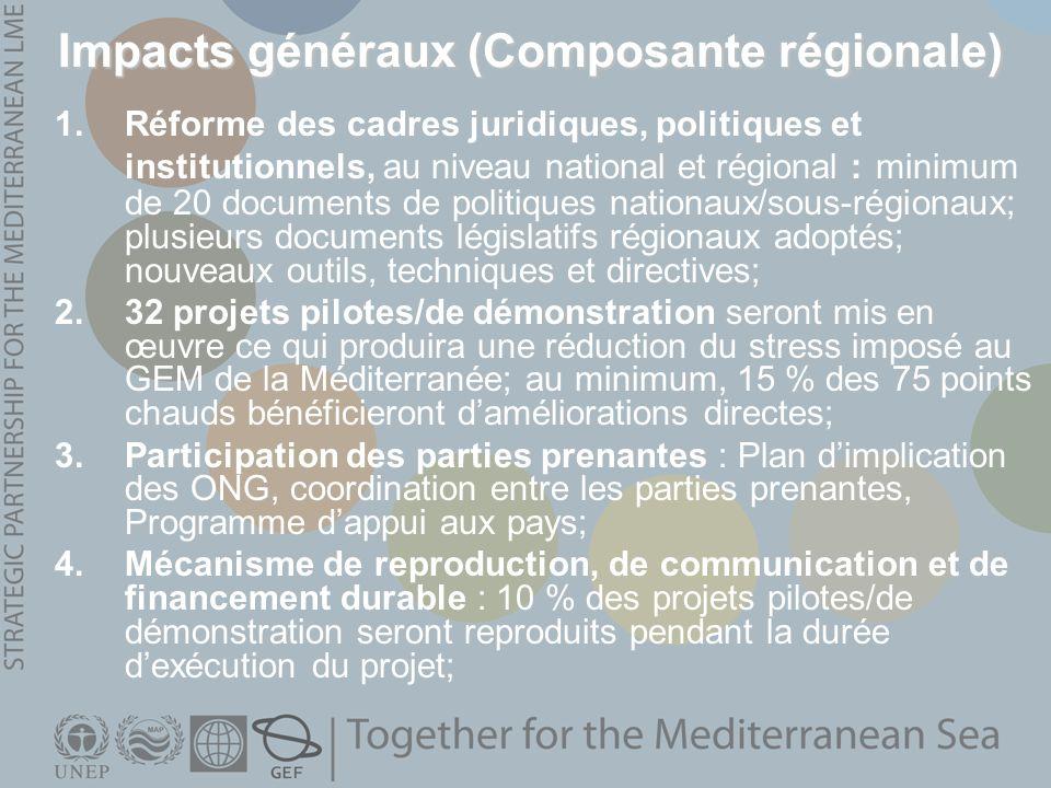 Impacts généraux (Composante régionale) 1.Réforme des cadres juridiques, politiques et institutionnels, au niveau national et régional : minimum de 20