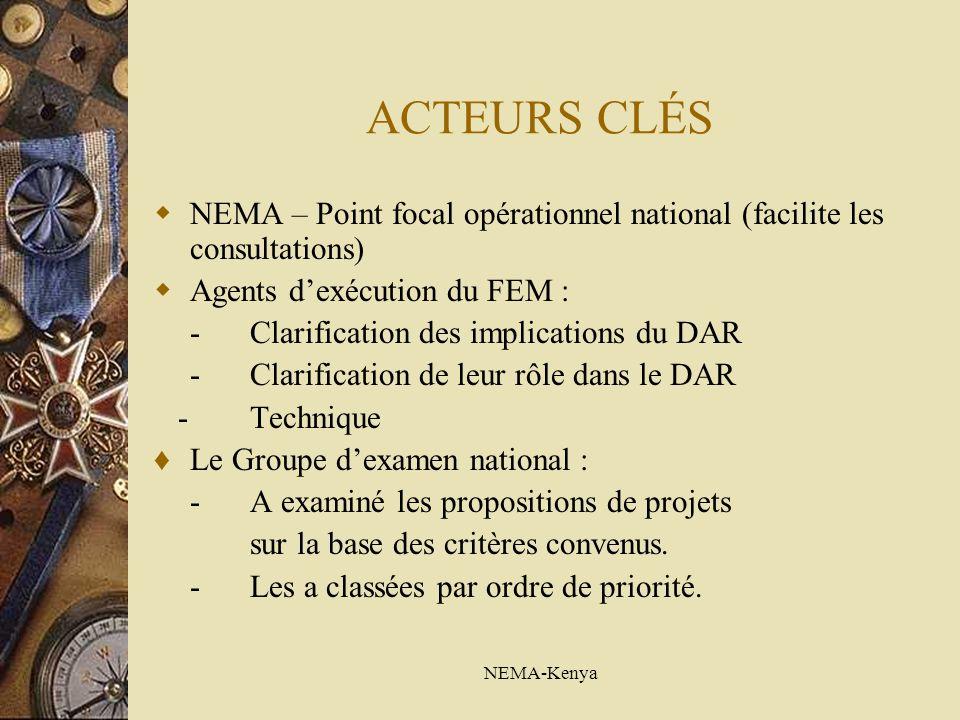 NEMA-Kenya ACTEURS CLÉS NEMA – Point focal opérationnel national (facilite les consultations) Agents dexécution du FEM : -Clarification des implications du DAR -Clarification de leur rôle dans le DAR - Technique Le Groupe dexamen national : -A examiné les propositions de projets sur la base des critères convenus.