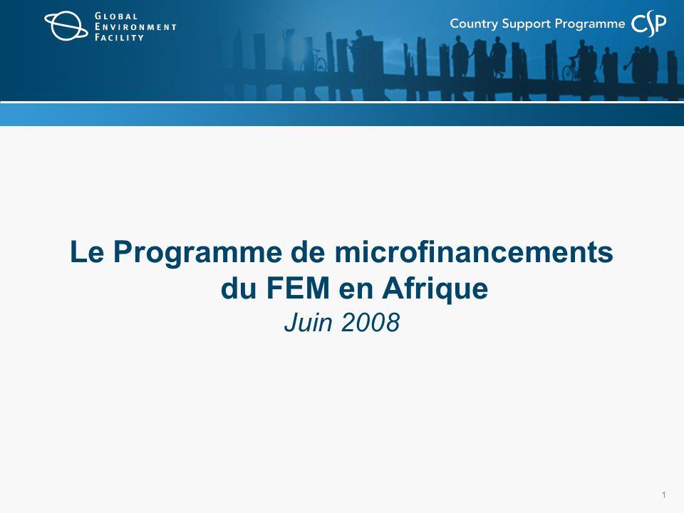 1 Le Programme de microfinancements du FEM en Afrique Juin 2008