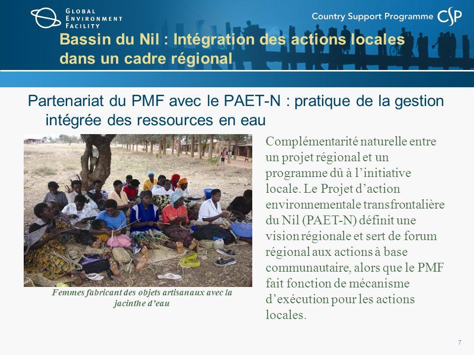 7 Bassin du Nil : Intégration des actions locales dans un cadre régional Partenariat du PMF avec le PAET-N : pratique de la gestion intégrée des ressources en eau Femmes fabricant des objets artisanaux avec la jacinthe deau Complémentarité naturelle entre un projet régional et un programme dû à linitiative locale.