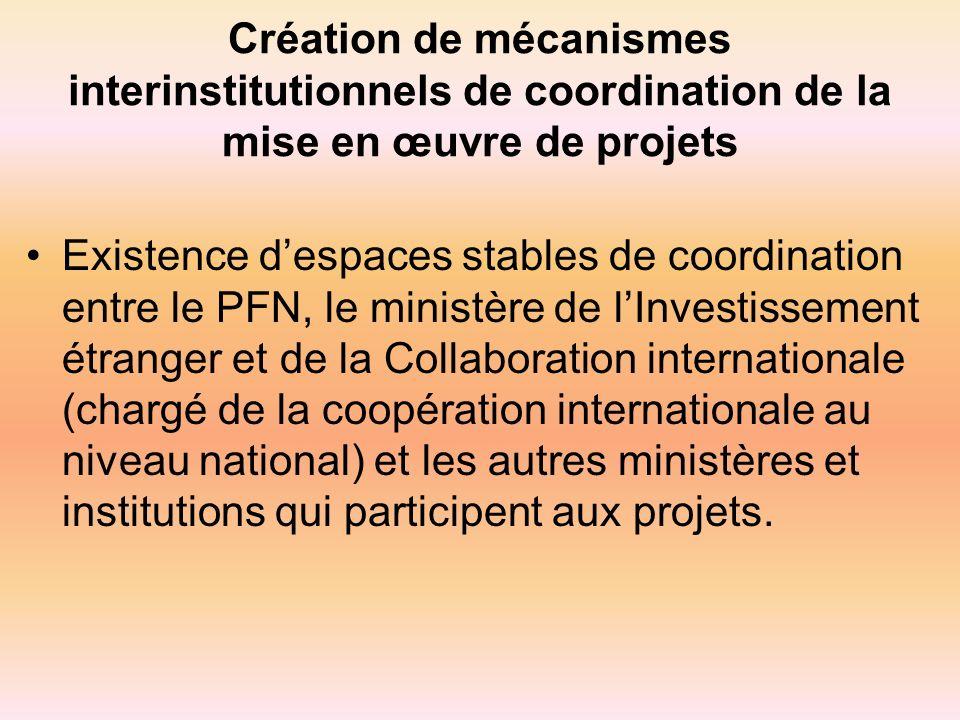 Création de mécanismes interinstitutionnels de coordination de la mise en œuvre de projets Existence despaces stables de coordination entre le PFN, le ministère de lInvestissement étranger et de la Collaboration internationale (chargé de la coopération internationale au niveau national) et les autres ministères et institutions qui participent aux projets.