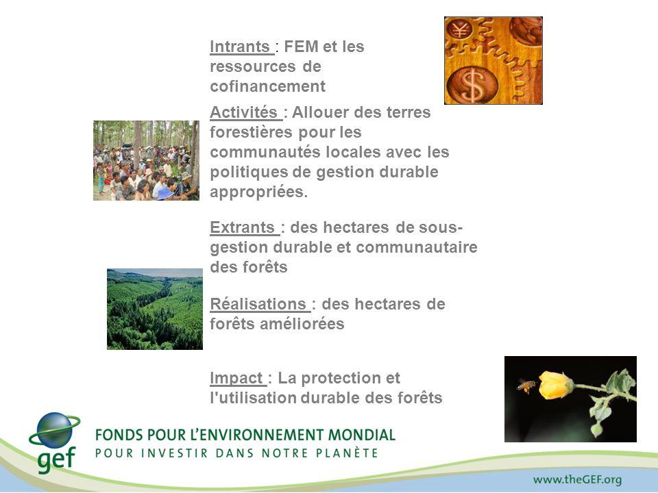 Intrants : FEM et les ressources de cofinancement Activités : Allouer des terres forestières pour les communautés locales avec les politiques de gesti