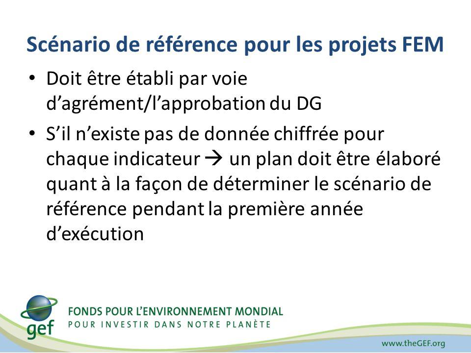 Scénario de référence pour les projets FEM Doit être établi par voie dagrément/lapprobation du DG Sil nexiste pas de donnée chiffrée pour chaque indic