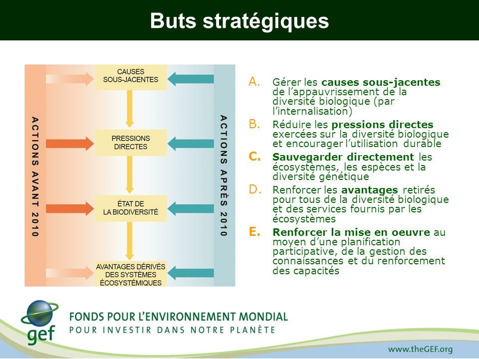 Buts stratégiques A. Gérer les causes sous-jacentes de lappauvrissement de la diversité biologique (par linternalisation) B. Réduire les pressions dir
